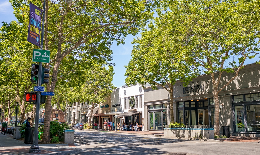 Image for Pieces Form the Whole: How Palo Alto's Comprehensive Approach to Parking is Improving Downtown